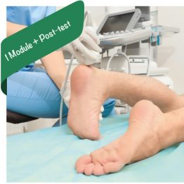 Musculoskeletal Ultrasound Lower Extremity
